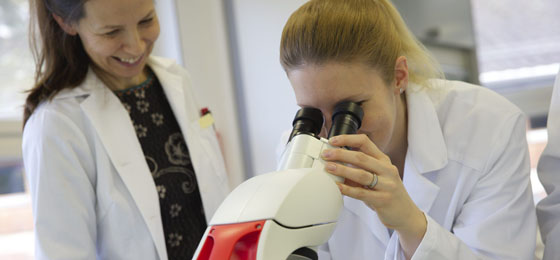 This picture shows a researcher looking into a microscope in a laboratory. © SNSF