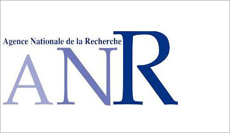Logo of the Agence Nationale de la Recherche. © ANR